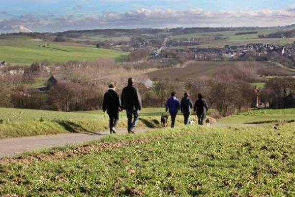 wandelen met uitzicht over de heuvels te Witten