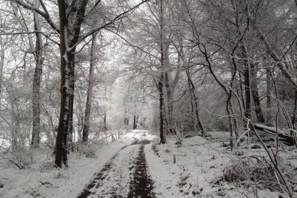 Winter wandeling in Zuid-Limburg